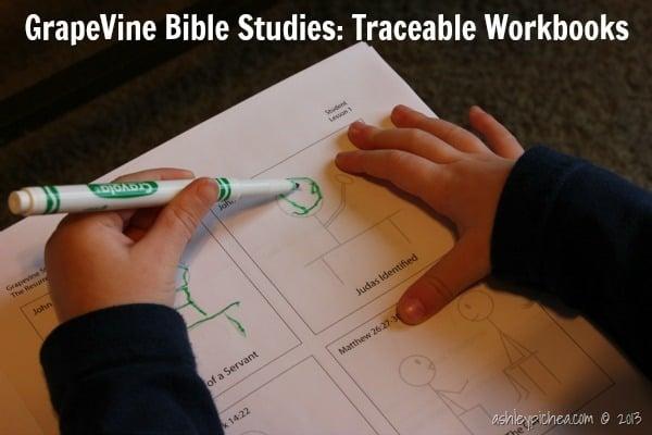 GrapeVine Studies - Traceable Workbooks | ashleypichea.com