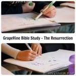 The Resurrection – a GrapeVine Bible Study
