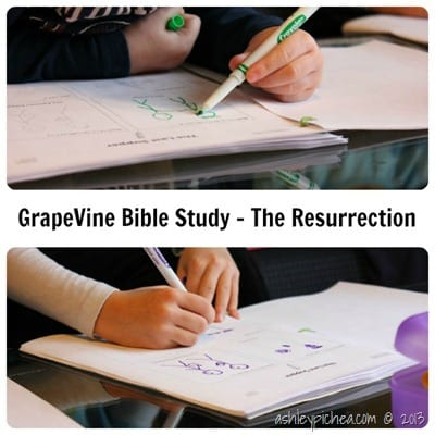 GrapeVine Studies - Resurrection study | ashleypichea.com