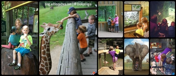 Going to the Zoo with Apologia | #ZooApologia