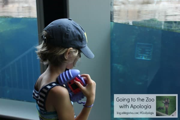 Zoo+Apologia=#ZooApologia | ashleypichea.com