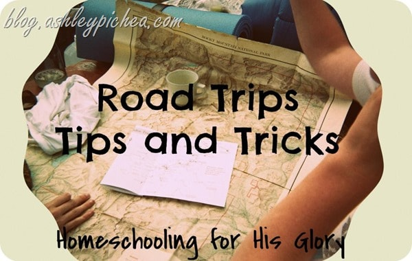 Road Trips: Tips and Tricks | part of the summer bucket list series on blog.ashleypichea.com