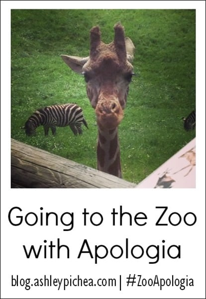 Going to the Zoo with Apologia | blog.ashleypichea.com #ZooApologia