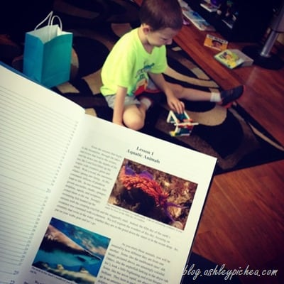 Reading Zoology with David | Learning with #ZooApologia at Home | blog.ashleypichea.com