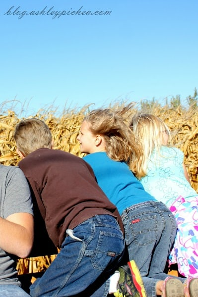 Jenny and cousins looking at the corn on a wagon ride at the apple orchard | visiting the apple orchard | fall family fun