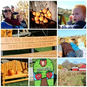 visiting the apple orchard   fall family fun