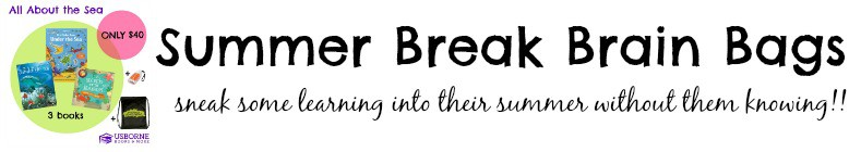 http://blog.ashleypichea.com/summer-break-brain-bags