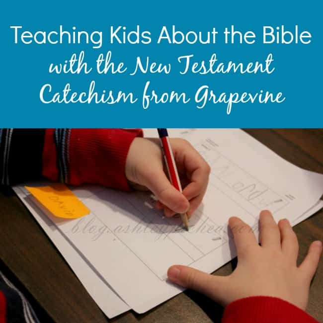 Teaching Kids About the Bible with the New Testament Catechism from Grapevine