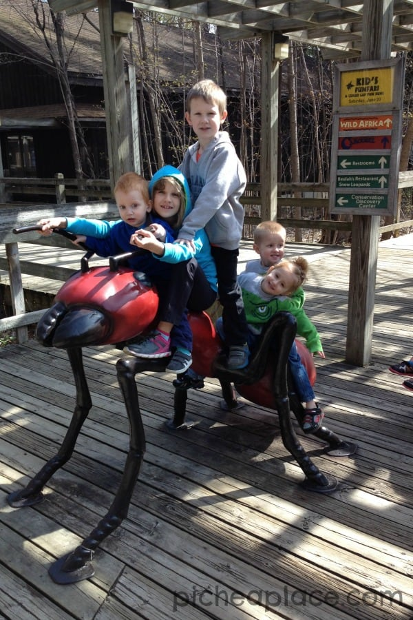 Binder Park Zoo with Cousins