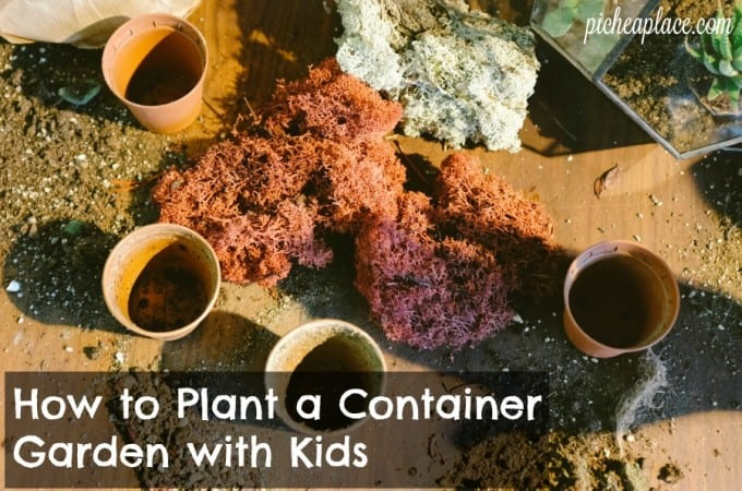 How to Plant a Container Garden with Kids