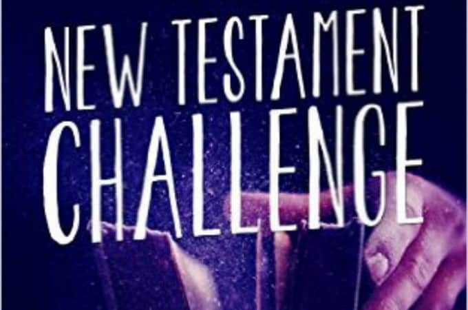 New Testament Challenge – a Bible Study for Busy Moms