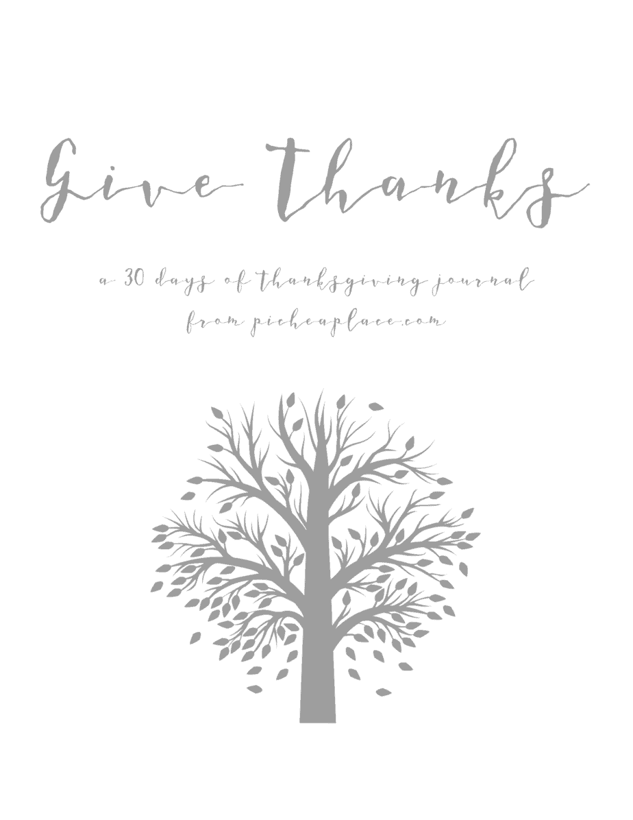 Be intentional about cultivating a heart of gratitude this November with a free printable Thanksgiving journal from PicheaPlace.com.