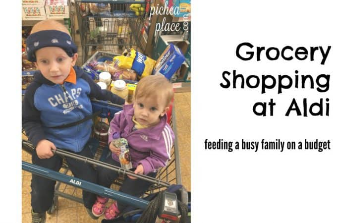 Feeding a Busy Family on a Budget: Monthly Aldi Shopping Trip