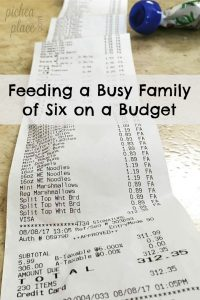 Recap of our monthly Aldi grocery shopping trip for a busy family of six - easy meal ideas for busy families