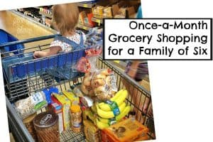 Once-a-Month Grocery Shopping for a Family of Six