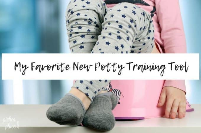 My Favorite New Potty Training Tool