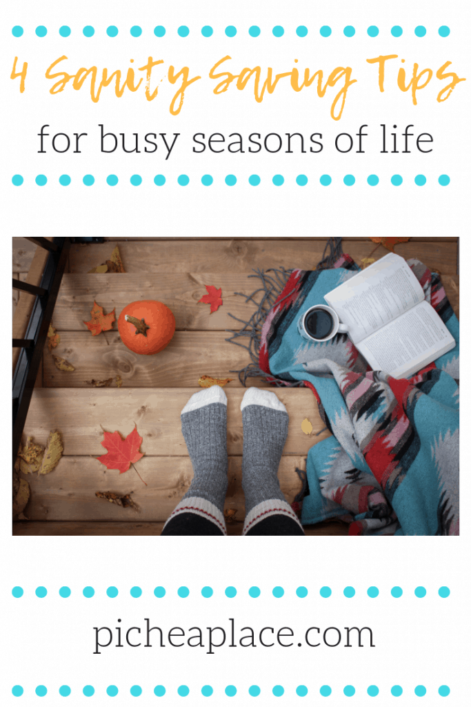 Busy seasons of life can cause busy families to turn to survival mode. Here are four sanity saving tips to help your busy family thrive...